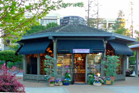 Shady Lane - Fine Gifts from Local Artisans