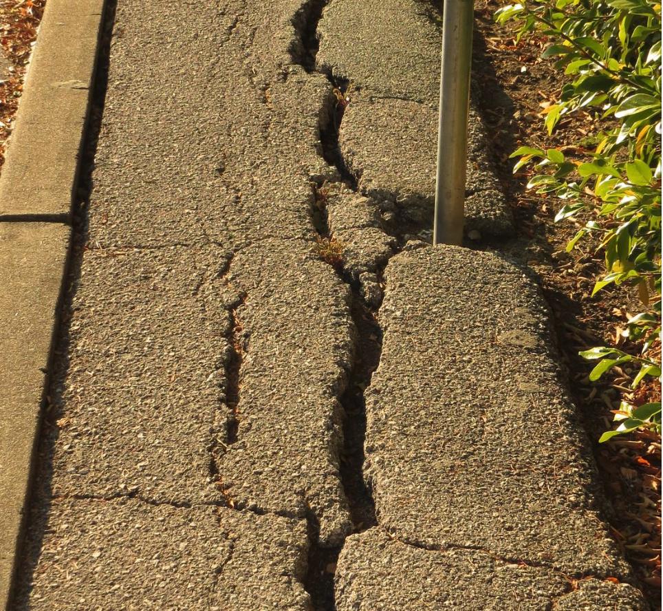 Alameda Sidewalk Safety - Dangerous