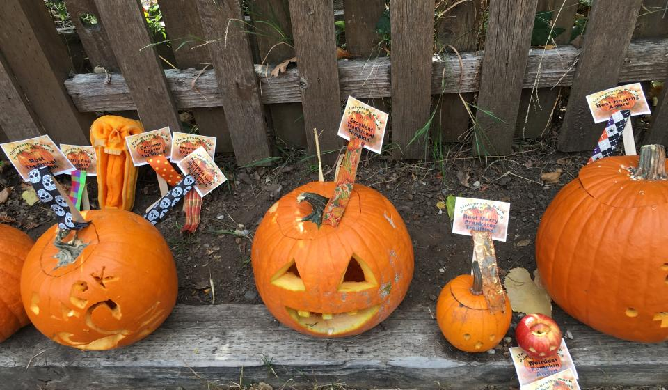 Neighborhood Pumpkin Carving, Parade, Potluck
